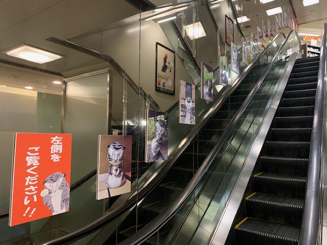「トラりんと学ぶ日本の美術パネル展」